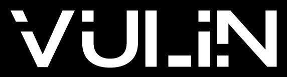 AP-ITSERVICES_Partner_Vulin
